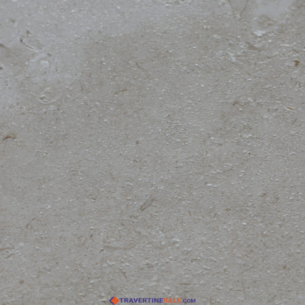 shell beige limestone tile surface with brushed finish and white background
